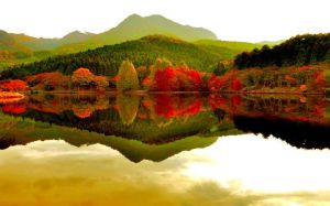 autumn-forest-reflecting-in-the-lake-2838-706